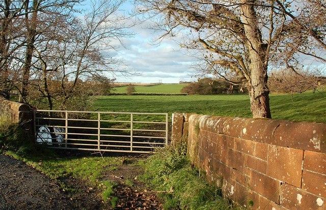 Monkton Farmland View