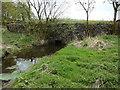 SD5398 : Bridge over Light Water on Fir Trees Lane by Alexander P Kapp