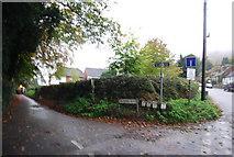 TQ6059 : Pilgrims Way, Wrotham by N Chadwick