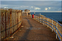 SZ6497 : Path by Southsea Castle, Hampshire by Peter Trimming