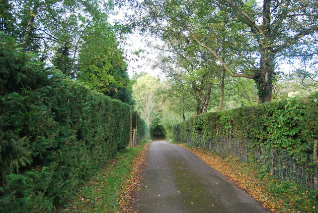 Sussex Border Path west of Faircrouch Lane