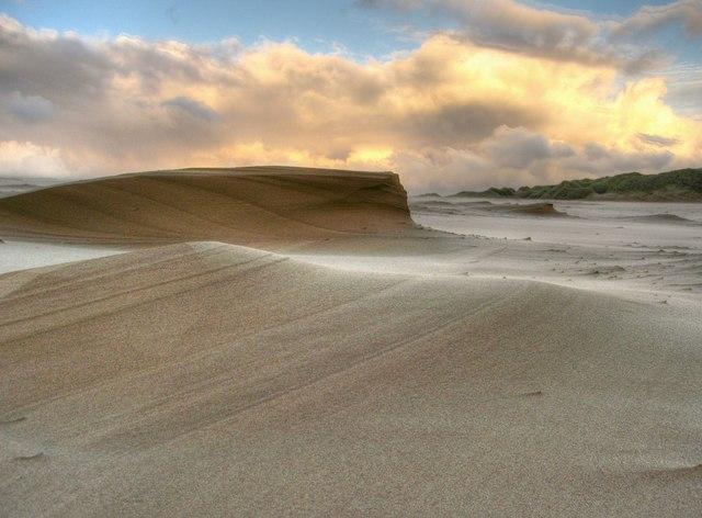 Newburgh: The Sands of Forvie