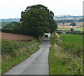 SO7790 : Country road near Sytch House Green by Stephen Richards