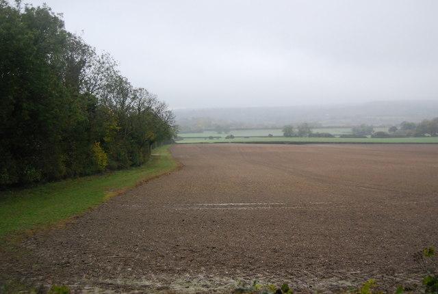 Fallow field south of Pilgrims' Way