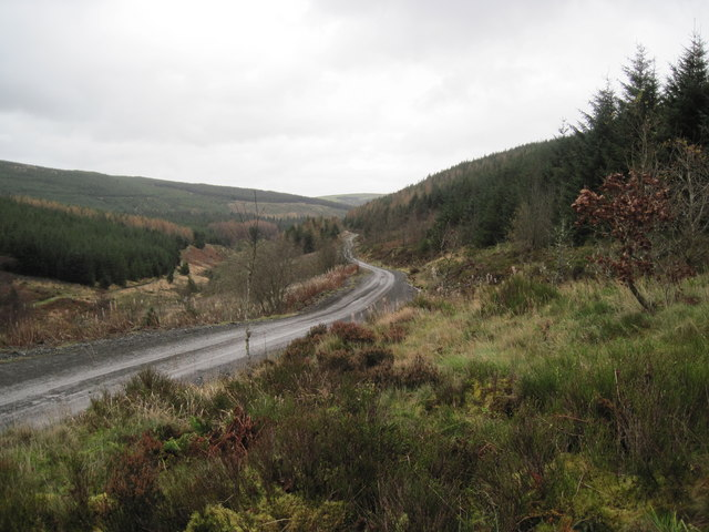 Forest track in southern end of Hafren Forest