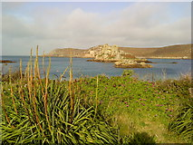 SV8815 : Hangman's Island from Bryher by Andrew Abbott
