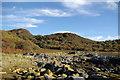 NR9170 : Coastal scenery & woodland at Glenan Bay by Leslie Barrie