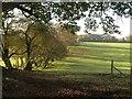 SU9384 : Field and field boundary, Dorney Wood by Derek Harper