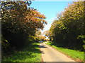 SW7226 : Access lane to Merthen Manor by Rod Allday