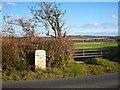 SW6823 : Milestone beside the A3083 near Mainlay by Rod Allday