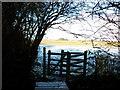 TA0136 : The Beverley 20 (walk) towards Beverley by Ian S