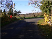 SU8016 : The road at North Marden looking west by Shazz