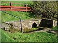 NY3767 : St Michael's Well, Arthuret by Alexander P Kapp