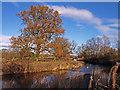 NS4366 : River Gryfe by wfmillar