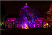 TQ1776 : Great Conservatory, Syon Park, Brentford by Peter Trimming