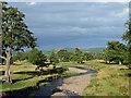 NU0224 : Parkland near East Lilburn (1) by Stephen Richards