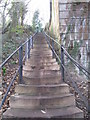 NY4654 : Some of the 99 steps by Jonathan Thacker