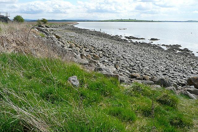 River Fergus estuary