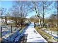 SO3897 : The lane from Bridges towards Gatten by Richard Law