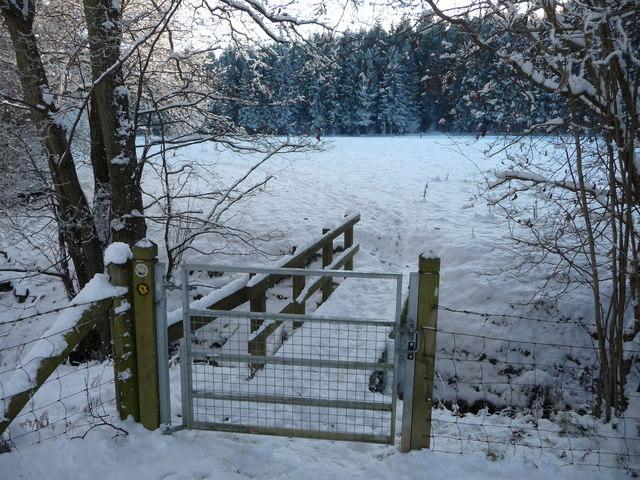 Footbridge on the Wye Valley Walk in winter