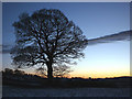 SD5377 : Evening falls over Burton-in-Kendal by Karl and Ali