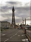 SD3036 : Blackpool Tower by David Dixon