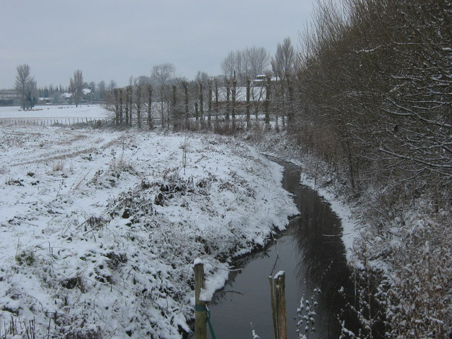 Wingham River near Great Pedding Farm