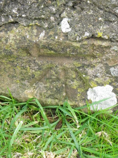 Bench Mark, Buchanty