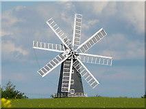 TF1443 : Heckington Windmill by Steve Tapster