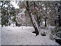 TQ8010 : Snow at Alexandra Park by Oast House Archive