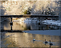 NN6207 : Footbridge in Callander by Sheila Winstone