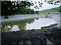 SD3982 : Flood pond by Alexander P Kapp