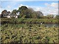 TL4787 : Old Bedford River by Hugh Venables