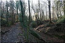 SU9186 : Church Path by Graham Horn