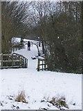 SO9194 : Snowy Footpath by Gordon Griffiths