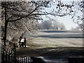 SP2872 : A frosty route to the town centre, Abbey Fields by John Brightley