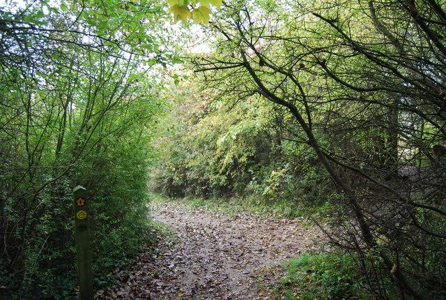 Waymark, North Downs Way, Otford Mount