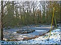SO7978 : Frozen pond next to Habberley Lane by P L Chadwick
