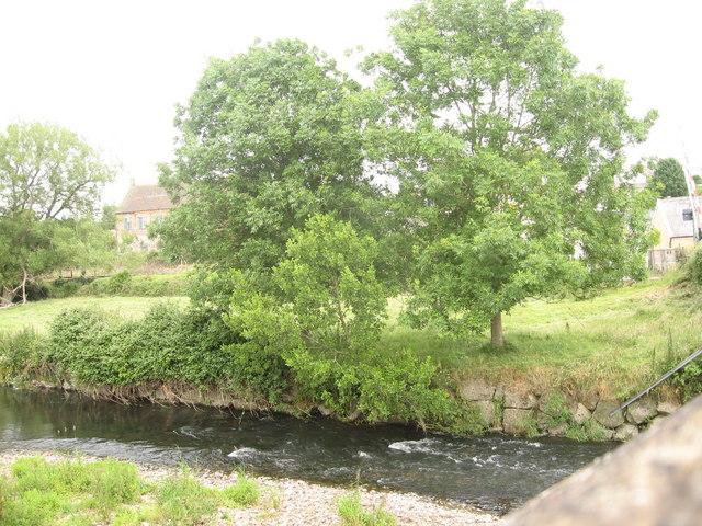 River Axe Rapids