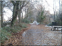 ST1380 : Path on the east bank of the River Taff near Radyr weir by Jaggery