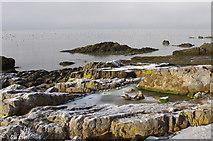 SD4061 : Foreshore near Throbshaw Point by Ian Taylor