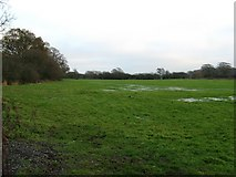 TQ1814 : Waterlogged field near Upper Northover Farm by Dave Spicer