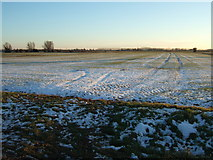 TF5315 : Snowy farmland on Church Lane, Terrington St John by Richard Humphrey