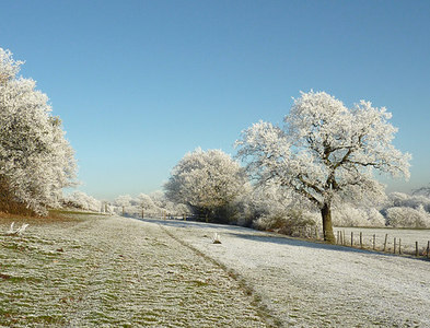 SO9095 : Frosted footpath towards Colton Hills, Wolverhampton by Roger  Kidd