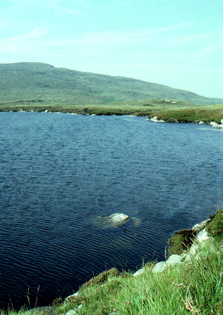 The northern end of Loch Faoileann