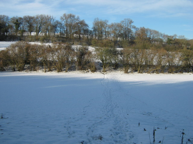Footpath to Buckhurst Farm