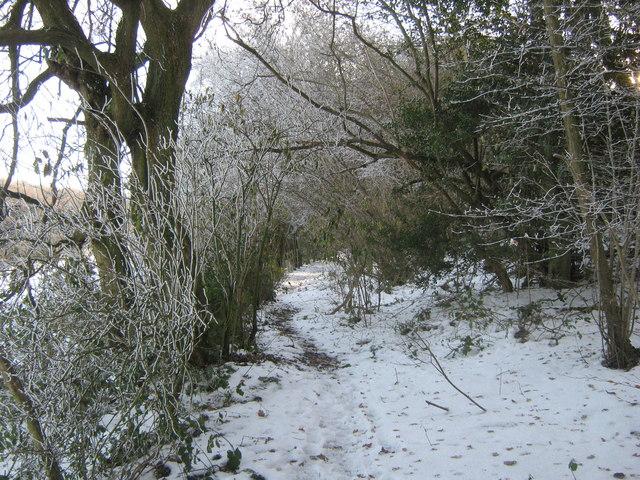 Footpath to Old Harrow Lane