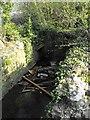 SJ2307 : Footbridge over Lledan Brook by Penny Mayes