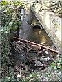 SJ2307 : Looking down Lledan Brook by Penny Mayes