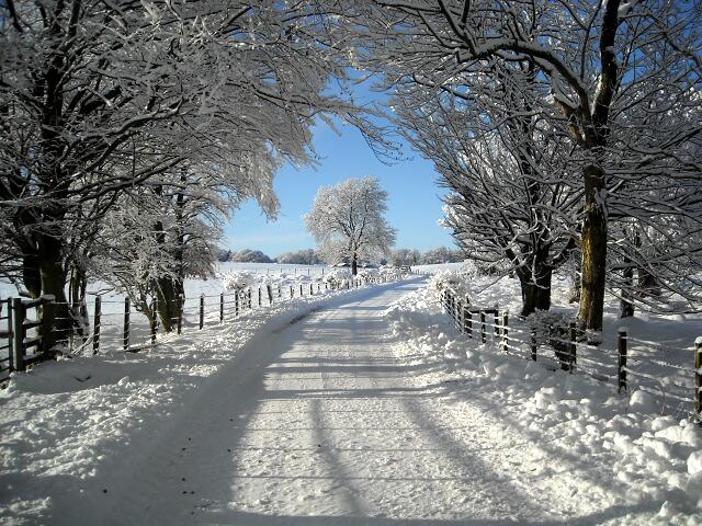 Minor Road Near Skeoch